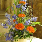 Hochzeit Altarschmuck Gerbera, Delphinium, orange, blau