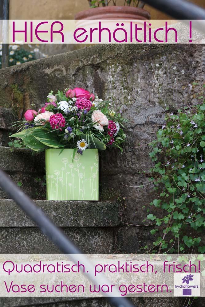 Hydrobox - erhältlich im Blumeneck Kreinacker Hainichen